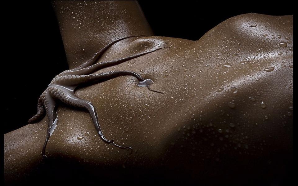 путка с октопод